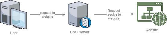 How domain name server works